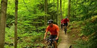 mountain bike the bruce