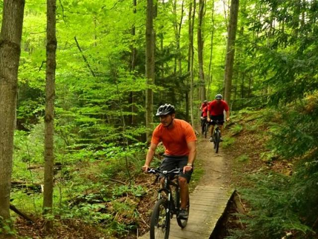 mountain bike te bruce